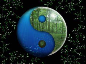 Poletni solsticij (夏至 Xiàzhì) ali 10. sončno obdobje (21.6. do 7.7.)